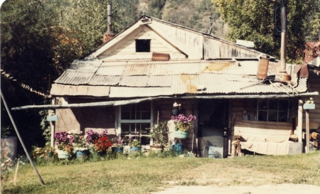 Yukon homestead, circa 1983